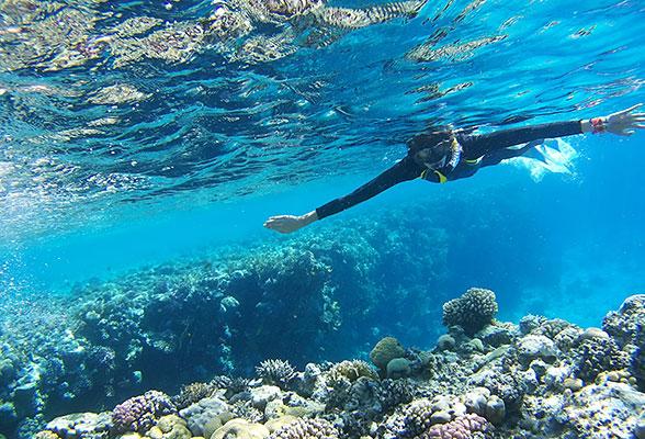 TheMoorings ExploreIslaMorada Snorkeling cbffb